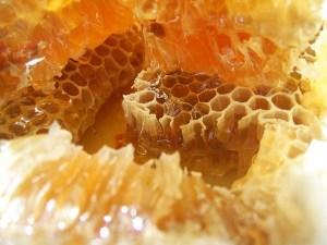 мед и соты